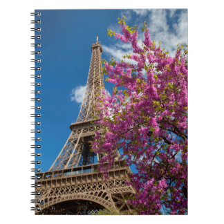 Pink Blossoming Tree Below The Eiffel Tower Notebook