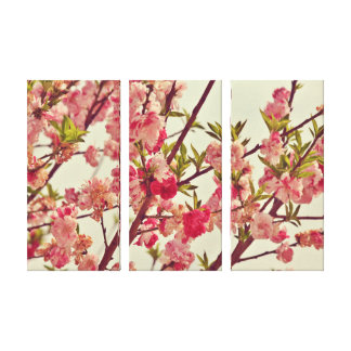 Pink Blossoms - 3 Panel Canvas