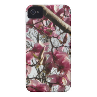 Pink Blossoms Blackberry Case