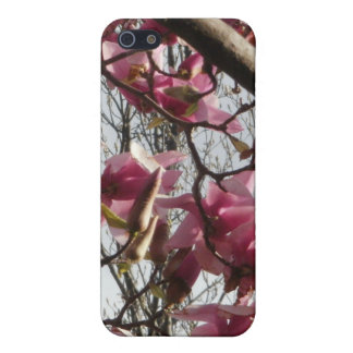 Pink Blossoms Cases For iPhone 5