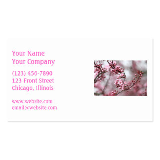Pink Blossoms in Spring Photo Double-Sided Standard Business Cards (Pack Of 100)