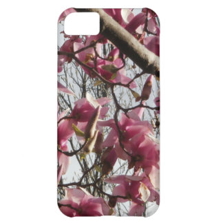 Pink Blossoms iPhone 5C Cases