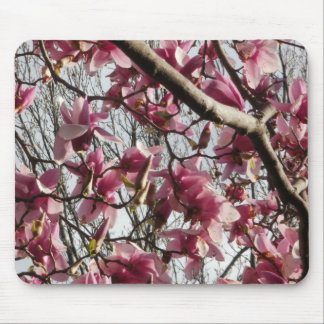 Pink Blossoms Mouse Pads