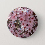 Pink Blossoms on Ornamental Flowering Tree Button