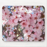 Pink Blossoms on Ornamental Flowering Tree Mouse Pad