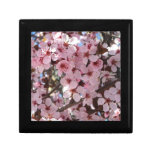 Pink Blossoms on Spring Flowering Tree Jewelry Box