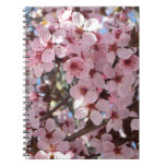 Pink Blossoms on Spring Flowering Tree Spiral Notebook