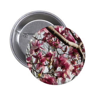 Pink Blossoms Pinback Button