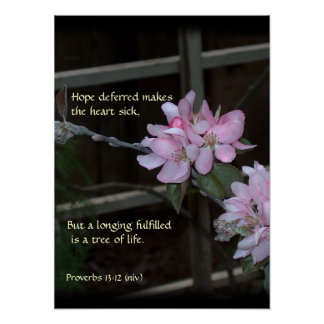 Pink Blossoms ~ Proverbs 13:12 Poster