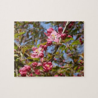 Pink Blossoms Puzzle
