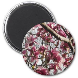 Pink Blossoms Refrigerator Magnet