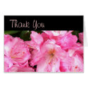 Pink Blossoms Thank You Card