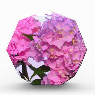 Pink & Blue  Hydrangeas Acrylic Award
