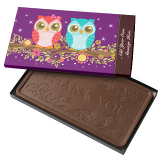 Pink & Blue Owls - Custom Message 2 Pound Milk Chocolate Bar Box