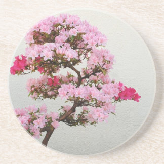 Pink Bonsai Tree Drink Coaster