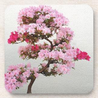 Pink Bonsai Tree Drink Coasters