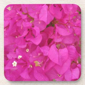 Pink Bougainvillea Flower (Greece) Beverage Coaster