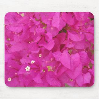 Pink Bougainvillea Flower (Greece) Mouse Pad