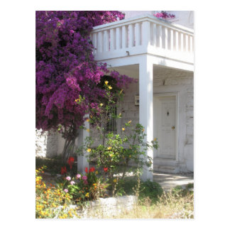 Pink Bougainvillea growing outside a house, GREECE Postcard
