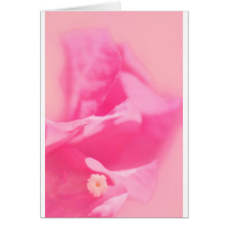 Pink Bougainvillea Leaves and Flower Close-up Card