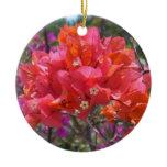 Pink Bougainvillea Ornament