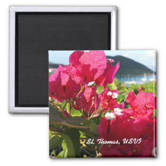 Pink Bougainvillea with Island Harbor Magnet
