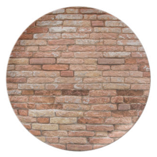 Pink brick wall dinner plates