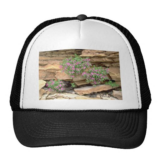 Pink Broad-leaved willow herb, Northwest Territori Trucker Hats