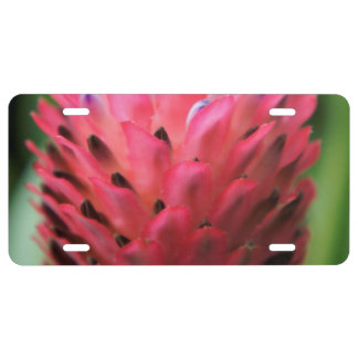 Pink Bromeliad 2 License Plate