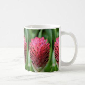 Pink Bromeliad 2 Mugs