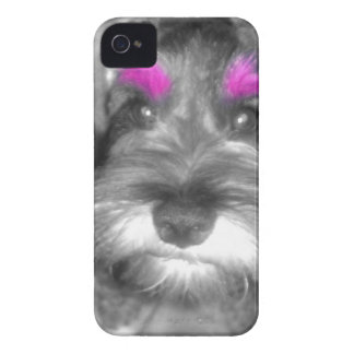 Pink Brow Miniature Schnauzer Puppy Rock & Roll iPhone 4 Case-Mate Cases