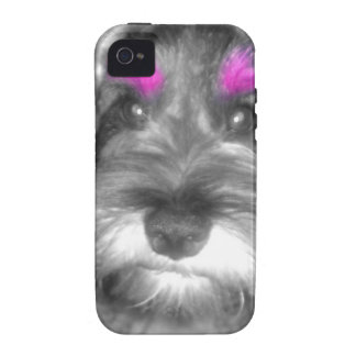 Pink Brow Miniature Schnauzer Puppy Rock & Roll Vibe iPhone 4 Covers