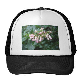 pink buds trucker hat