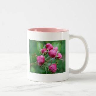 Pink buds Two-Tone coffee mug