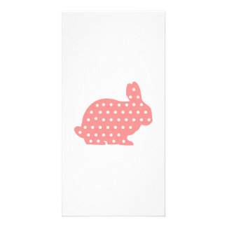Pink Bunny rabbit Picture Card