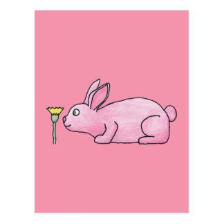 Pink Bunny Rabbit. Postcard