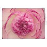 Pink Buttercup Card