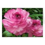 Pink Buttercups Card