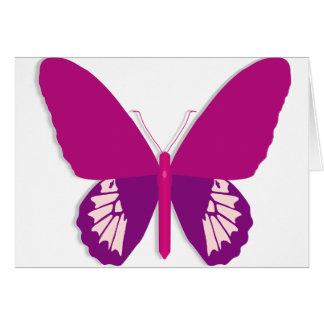 Pink Butterfly Note Cards
