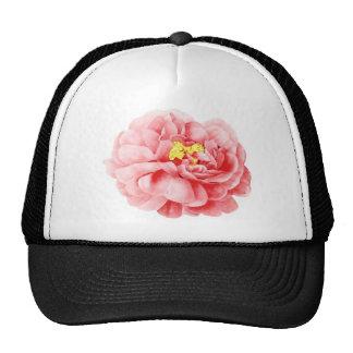 Pink Cabbage Rose Flower Shabby Cottage Trucker Hat