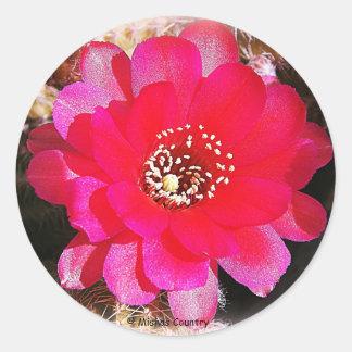 Pink Cactus Bloom Classic Round Sticker