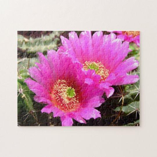 PInk cactus blossom puzzle