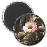 Pink Cactus Flower 2 Inch Round Magnet