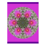 Pink Cactus Flower Post Cards