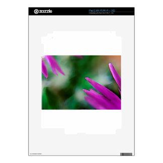 Pink Cactus Petals iPad 2 Skin