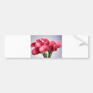 Pink Calla Lilies Bumper Sticker