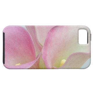Pink Calla Lilies iPhone 5 Cases