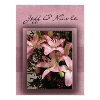 Pink Calla Lilies Postcard