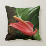 Pink Calla Lily Elegant Floral Photography Throw Pillow