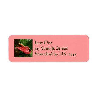 Pink Calla Lily Tropical Flower Return Address Label